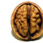 がんの不安を減らせる食べ物は【オメガ3系】(n-3系脂肪酸)