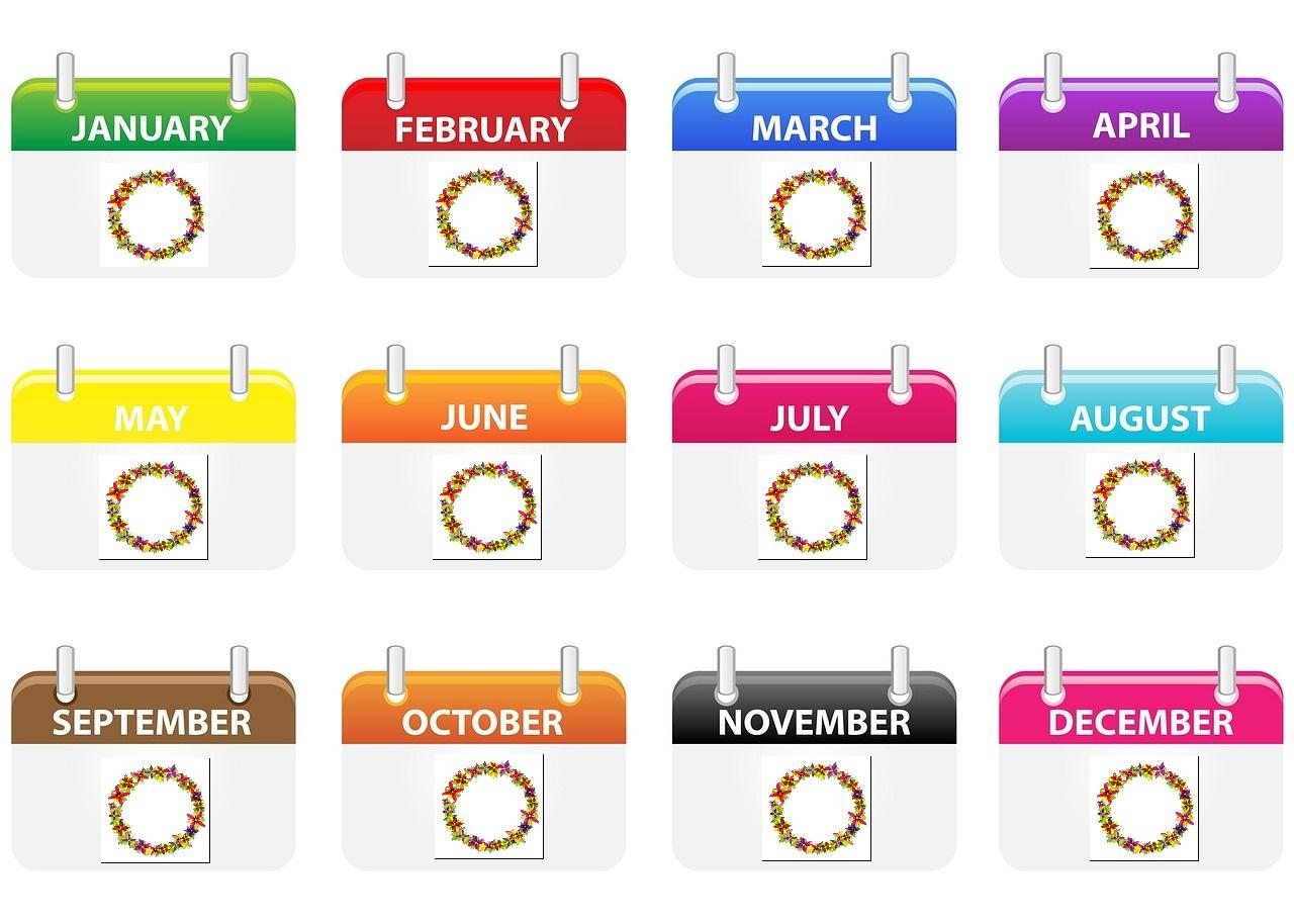 早期緩和ケアクリニック外来毎月プラン