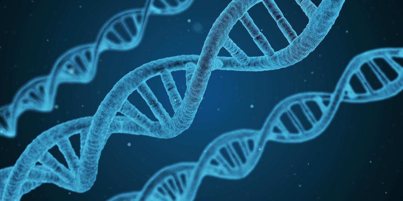 がんゲノム医療のメリット・費用・受けられる病院が2分でわかる専門医解説です