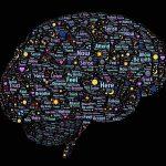 がん脳転移に効く抗がん剤や薬、診断時に知っておく事や余命は?