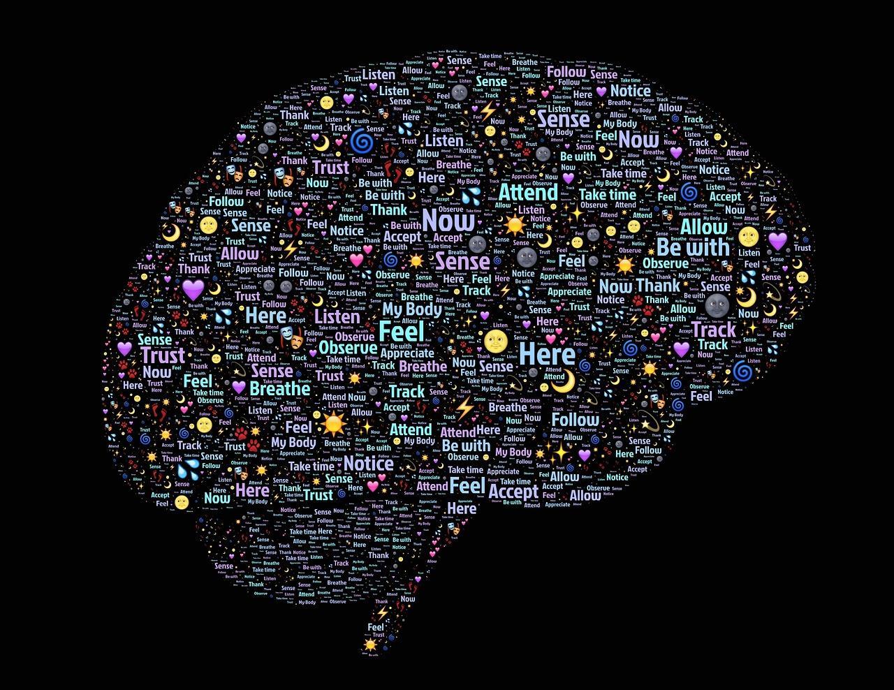 脳転移の治療と緩和ケアを解説しています