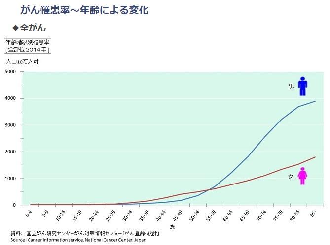がん罹患率の図。高齢者が高い。