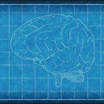 くも膜下出血・脳卒中(脳梗塞・脳出血)の死因や緩和ケアを解説