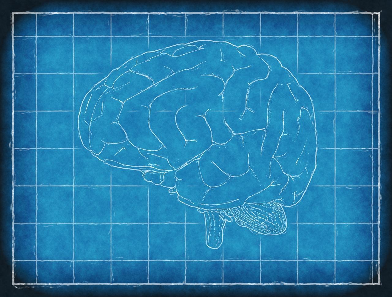 くも膜下出血・脳卒中(脳梗塞・脳出血)の緩和ケアを解説