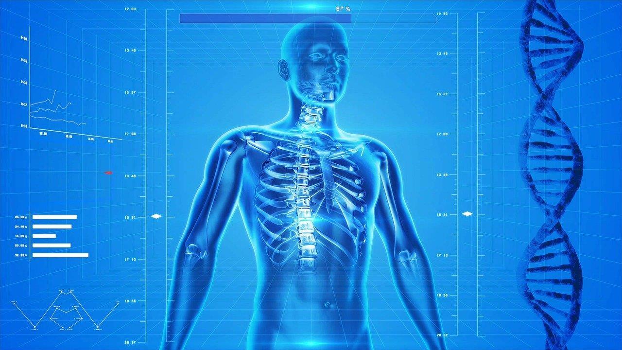 新型コロナやウイルスと多臓器不全を解説
